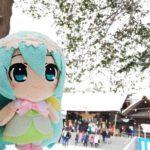 ミクさんは北海道神宮に初詣に行きました