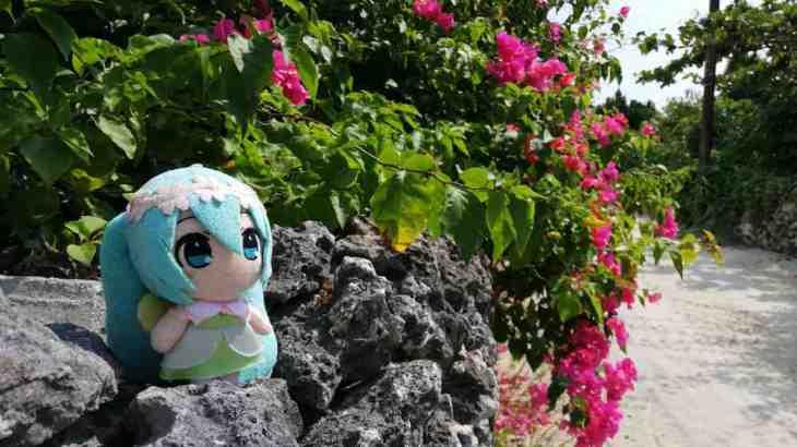 【ミク旅☆スペシャル】荒波を越えてゆけ!!  石垣島発、日本最南端の島巡り