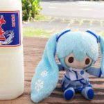 雪ミクちゃんは奄美大島で「みき」を飲みました