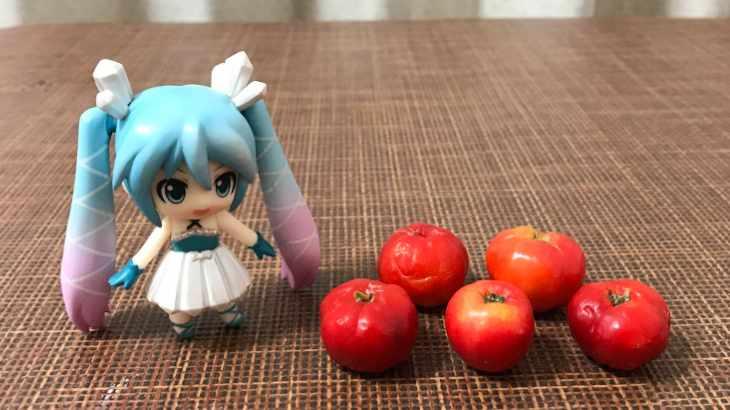 みくりすたる☆さんはアセロラの果実を食べました